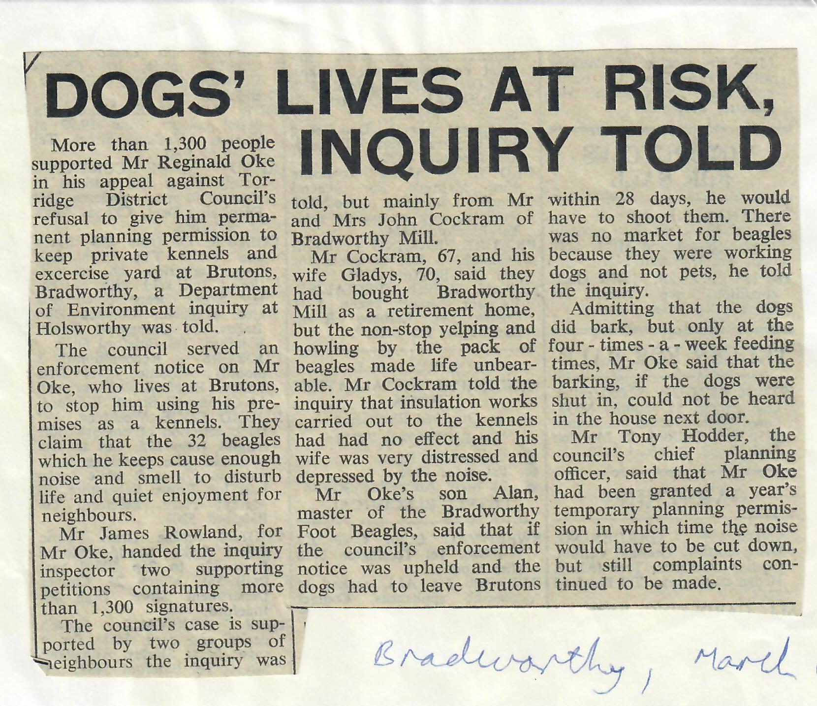 dogs lives at risk, inquiry told