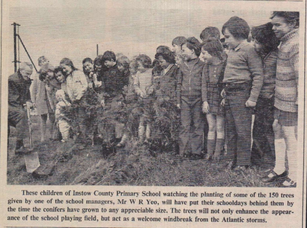 Instow School and trees November 1973